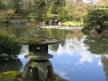 psychotherapy counseling peaceful Japanese garden setting